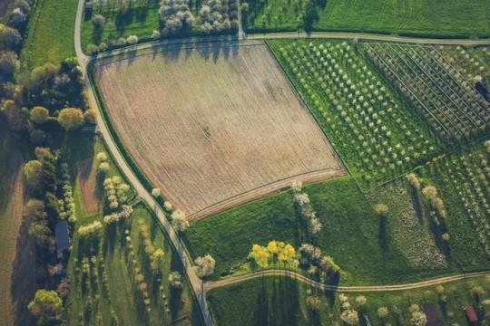 Бюджет Украины рассчитывает на существенные пополнения в связи открытием рынка земли