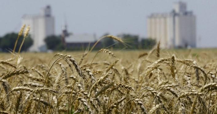 Каждый украинец имеет право на два гектара земли